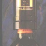 air au vin wine bottle aerator